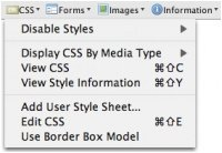 Screenshot Web Developer