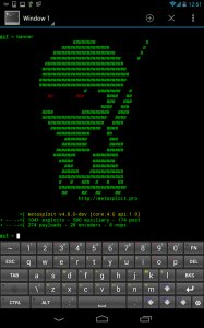 pwd-pad-screenshot-metasploit