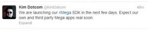 Mega SDK per Tablet e Smartphone