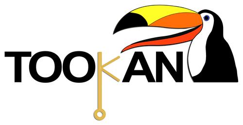 Smart card anti hacker: ecco il software Tookan