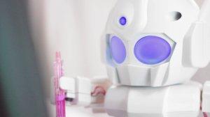 Rapiro Robot Raspberry PI