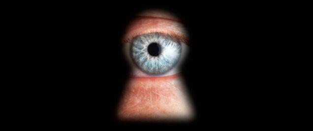 Regin: il virus spia dei Servizi Segreti